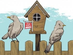 Adl Virani Vancouver Mortgage Broker